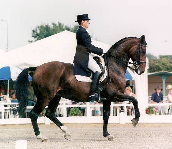 anastasia_hickstead-cdio_passage-new