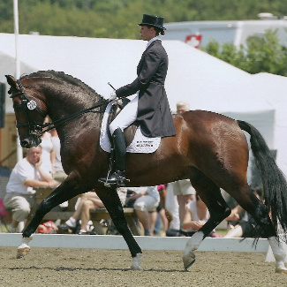 Forrest_Hickstead PLsquare