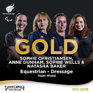 team rio gold 325