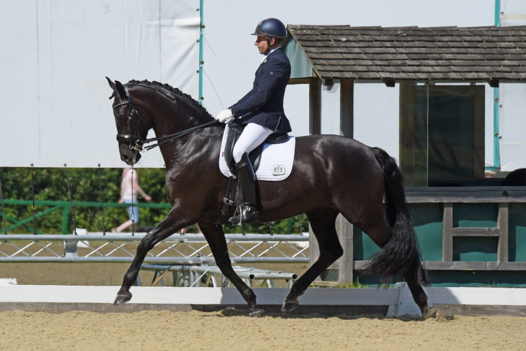 Dolly_Hickstead PL Best 2019